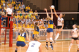 Thumb_volleyball_2